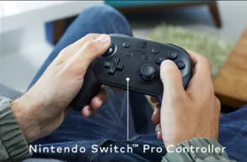 Pro Controller